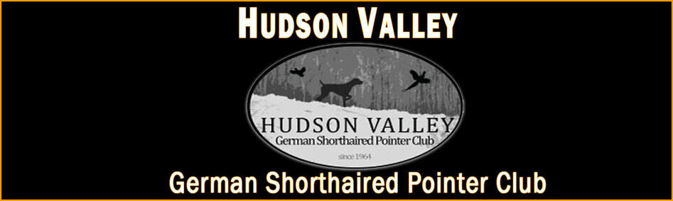 HUDSON VALLEY GERMAN SHORTHAIRED POINTER CLUB
